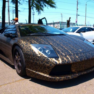 Lamborghini léopard