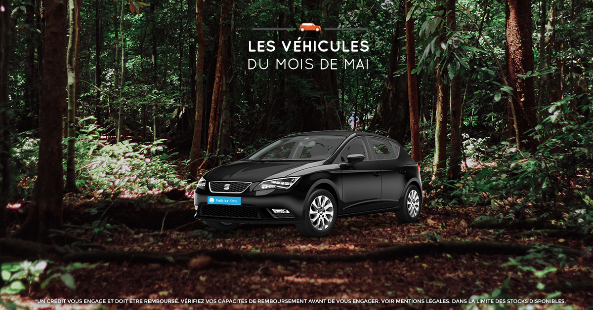 Seat Leon 1.2 TSI Style d'occasion - Véhicules du moi de mai VPN autos