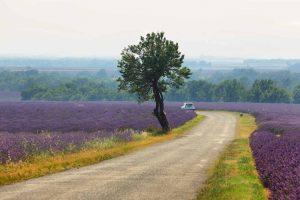 Les plus belles routes de France pour voyager cet été